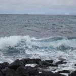 Trabalho Voluntário nas Ilhas Galápagos