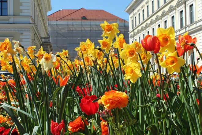 Primavera em Munique