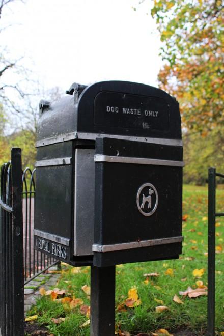 Para cachorros Londres