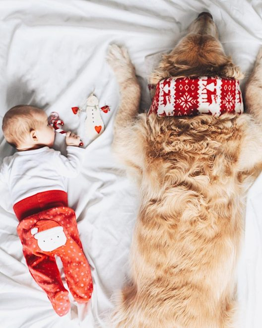 bebê e cachorro Natal